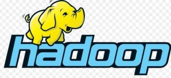 Hadoop和企业信息管理:利用大数据的解决方案