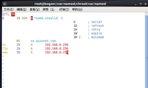 linux系统安装dns步骤