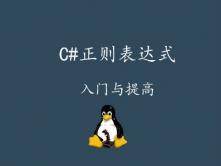 C#正则表达式入门与提高视频课程
