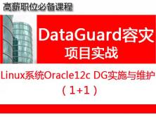 Oracle12c DataGuard容灾实施与维护1+1_Oracle视频课程培训10