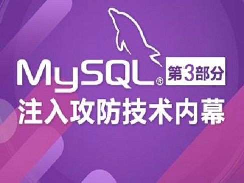 MySQL高级黑客 MySQL注入攻防技术内幕-第三部分视频