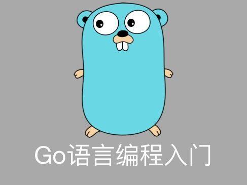 Go语言编程入门视频课程(该课程不提供源码)