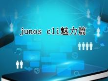 Juniper老司机经验谈:junos  cli魅力篇视频课程【大侠唐在飞出品】