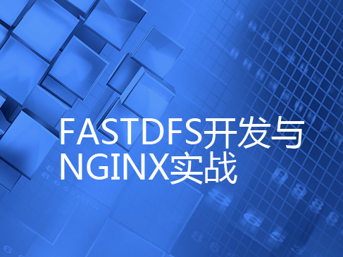 FastDFS實戰開發與Nginx實戰視頻課程專題