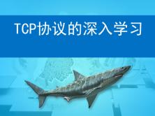 TCP协议的深入学习和利用wireshark排查TCP通信的故障视频教程