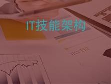 IT技能架构视频指导课程