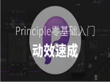 Principle动效快速入门视频教程