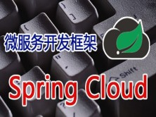 RPC开发框架之SpringCloud微服务架构视频课程