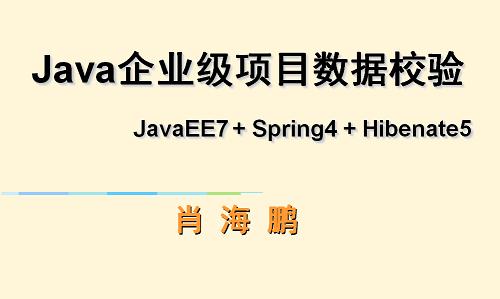 JavaEE7+Spring4 + Hibernate5企业级项目数据校验实战视频课程