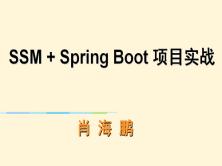 SSM+SpringBoot项目实战视频教程