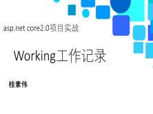 ASP.net core 2.0项目实战视频课程:Working