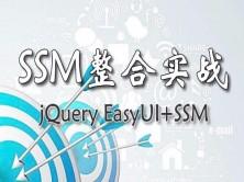 SpringMVC+Spring+Mybatis SSM整合实战视频教程