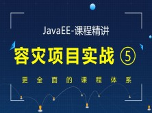 JavaEE精讲之容灾项目实战视频课程