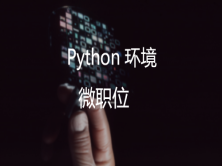 微职位:Python 环境
