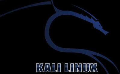 Kali Linux web渗透测试--初级教程1