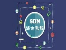 SDN綜合視頻教程