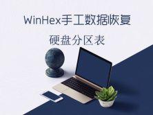 WinHex手工數據恢復之分區表視頻課程