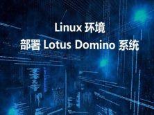 Linux環境下部署Lotus Domino 系統視頻課程