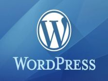 WordPress商業多站點配置教程