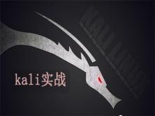 Kali Linux渗透测试与网络攻防进阶实战课程【2019新录】