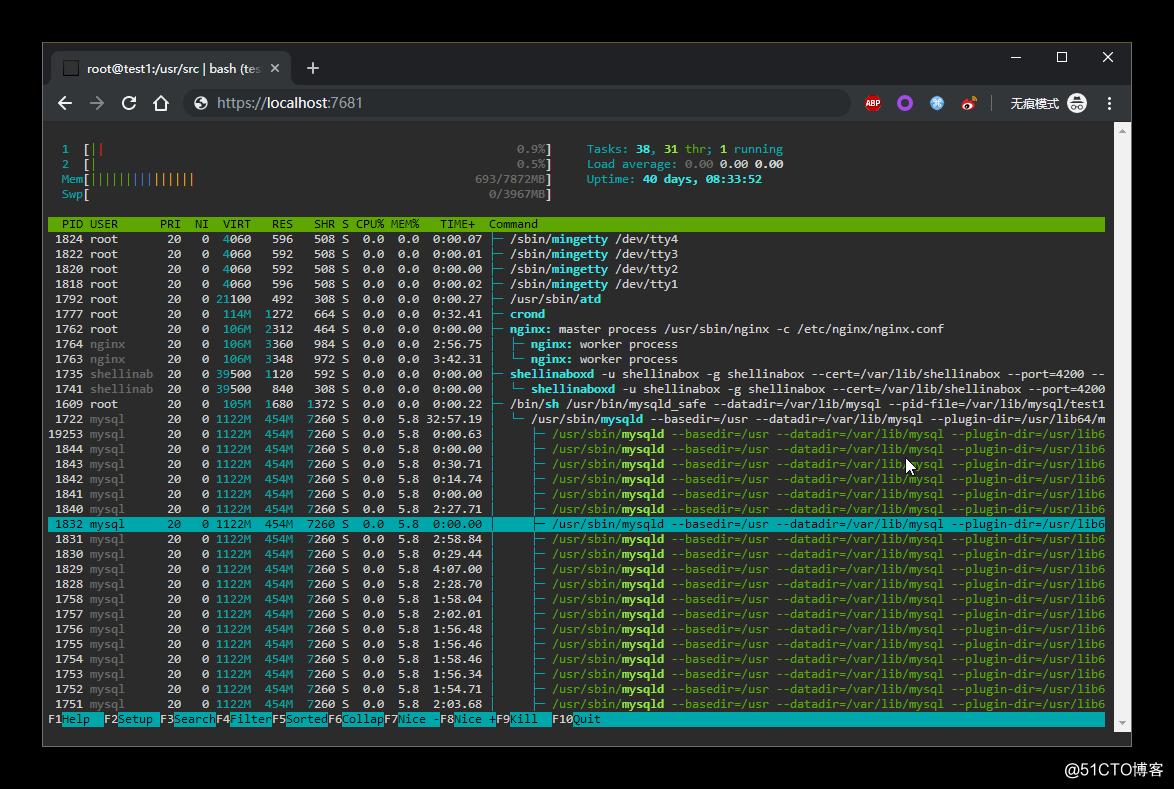 更优于 Shellinabox 的 web shell 工具 -- ttyd
