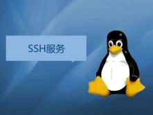 SSH服务重要知识深入浅出讲解实战视频课程(老男孩全新运维进阶系列L029)
