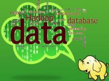 ChinaHadoop 2013 Hadoop大数据沙龙现场视频[夏季]