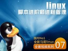 Linux脚本进阶和进程管理-[国内No1全新马哥linux视频课程系列七]